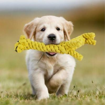 Pet Rope Chew Toys Dog Knot Teeth Braided Strong Tough Giraffe Bear Puppy WE