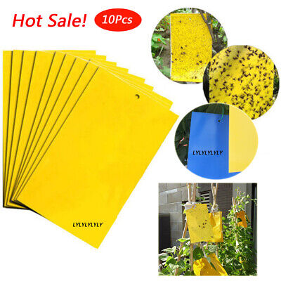 10x Large Greenhouse Sticky Traps Catch Multiple Flying Insect Pests HOT SALE UK