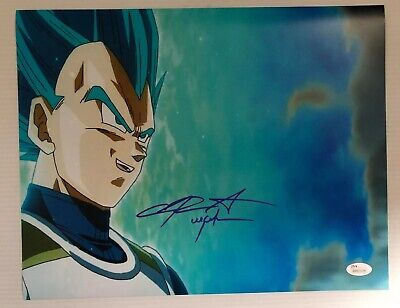 Chris Sabat Signed Autographed 11x14  Photo Dragon Ball Z Vegeta JSA COA 37