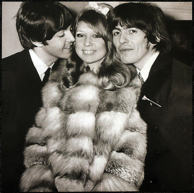 The Beatles Poster Page . 1966 George & Pattie Wedding With Paul Mccartney . 57M