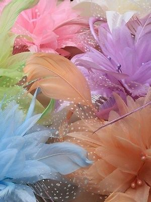Ladies Elegant Chiffon Flower and Feather Fascinator on Comb