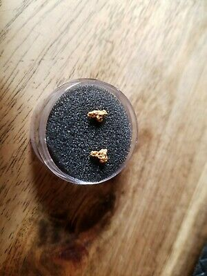2 gold nuggets .35g