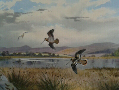 J C Harrison. Tryon Gallery limited edition print of Snipe. Framed.