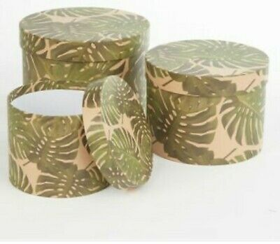 Florist Oasis Hat Boxes Cheese plant set of 3 lined  Flowers Gifts Living Vase