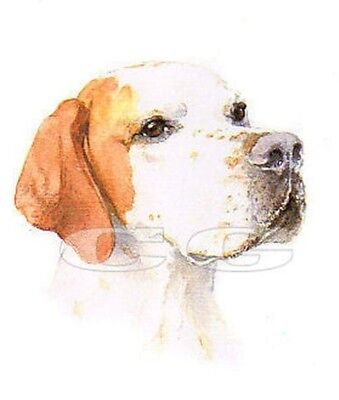 POINTER no4 3 Blank Dog greeting cards by Christine Groves