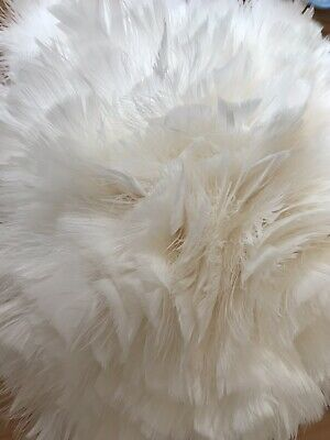 Strung Ivory Ostrich Feathers 1m Ideal for crafts/millinery/bridal