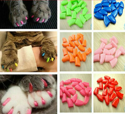 20pcs & 1 Glue Soft Cat Nail Caps Pet Cat Claw Covers Paw Protective Protector