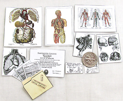 Miniature MEDICAL OFFICE DOCUMENTS Dollhouse 1:12 Scale DOCTOR NURSE ANATOMY