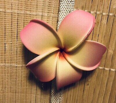 37b0c2f21 HAWAIIAN PLUMERIA FOAM Flower Hair Clip Rainbow Multicolor Pink ...