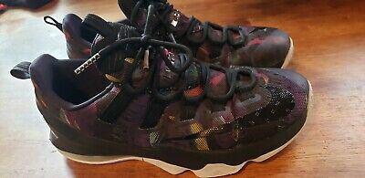 sale retailer 9b498 7984c Nike Air Zoom Max Men s LeBron James 13 Low Birds Of Prey Black 831925-051