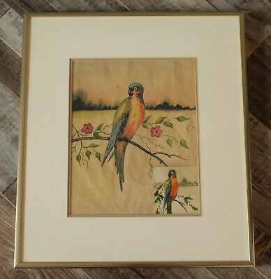Vintage Colourful Bird Watercolour/Gouache Paintings - Not Signed