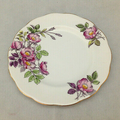 """ROYAL ALBERT FLOWER OF THE MONTH No 6 DOG ROSE 8"""" PLATE HAND PAINTED BONE CHINA"""