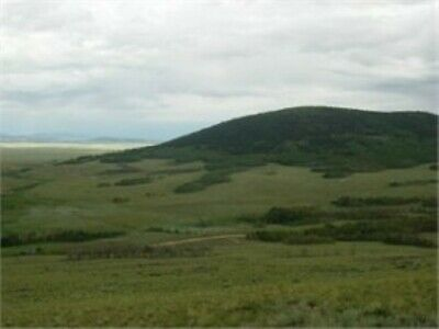 6.03 ACRES OF VACANT LAND near HARTSEL in PARK COUNTY, CO- Bankruptcy Sale!