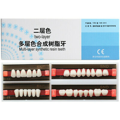 Dental A1 Shade T1 L25 Two-Layer Synthetic Resin Teeth Whitening Denture Tooth