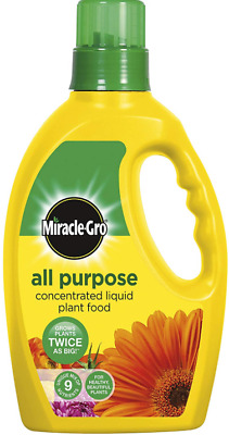 Fast Growing Plant Food Miracle Gro All Purpose Concentrated Liquid 1L