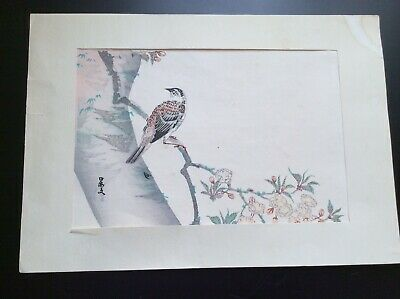 Vintage Asian Japanese Woodblock Print Bird on a Branch Signed