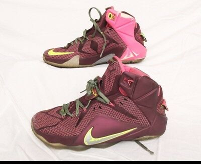 best service e6ece cc222 Nike Lebron James XII 12 Shoes Merlot Volt Sz 8.5 684593-607 DOUBLE HELIX