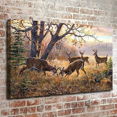 """Animal Elk Art Canvas Oil Painting Picture Print Home Wall Decor Unframed 16x24"""""""