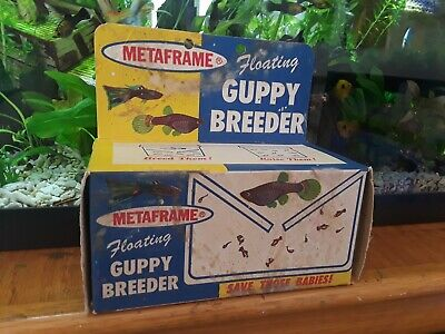 Vintage Old Aquarium Fish Bowl Metaframe Floating Guppy Breeder in Original Box