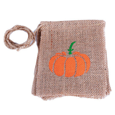 Halloween Theme Long Hanging Bunting Banner for Halloween Best to Hang SW