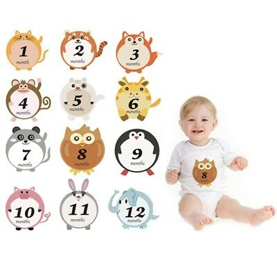 Lovely Animal Baby Monthly Milestone Sticker Baby Shower Photography Prop ToolHS