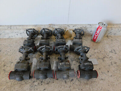 "8 NEW Newco Globe Valve 1/2"" Socket Weld Class 800# A105 Forged Steel Body NEW"
