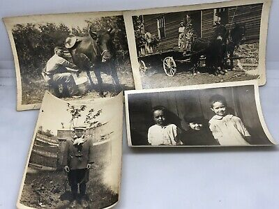 Antique Vintage Photo Early 1900's Wagon Cow Kids People