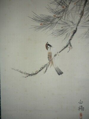 HANGING SCROLL JAPANESE PAINTING JAPAN PINE SPARROW ANTIQUE VINTAGE PICTURE 199n