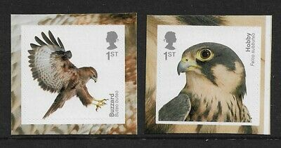 GB 2019 Birds Of Prey Hobby Buzzard self adhesive booklet stamps MNH