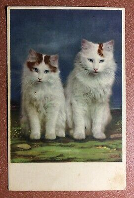 Old Postcard Postage Stamp 1928 CAT Charming Couple Pussy Angora Cat Blue Eyes