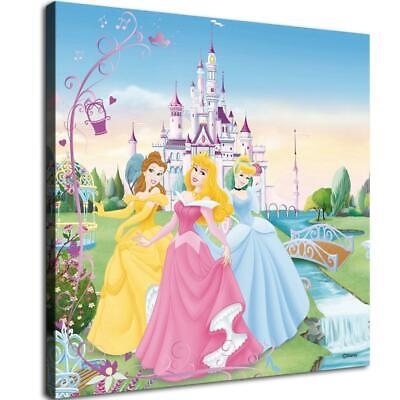 """12""""x12""""Disney Princess Paintings HD Print on Canvas Home Decor Wall Art Pictures"""