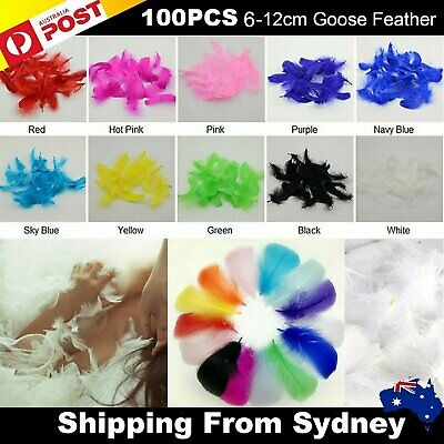 100x Goose Feathers DIY Craft Dream Catcher Wedding Party Cake Decoration 6-12cm