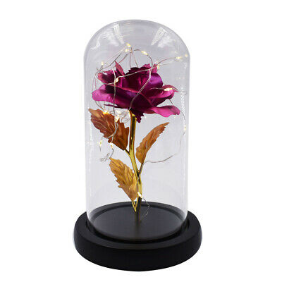 Holiday Gifts Rose Red 24k Gold Foil Plastic Rose Flower with LED Box Home Decor