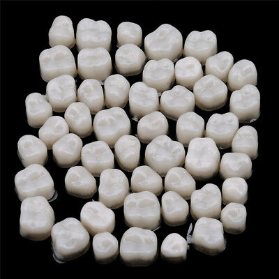 Oral Hygiene Care Dental Temporary Crown Material for Molar Teeth Stylish WE