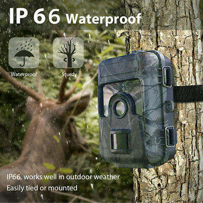 "16MP 1080P 2.3"" Hunting Trail Camera HD Wildlife Scouting Cam Night Vision IP65"