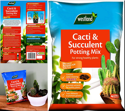 Westland Cacti  Succulent Potting Compost Mix&Enriched with Seramis,Pack 2 X 4 L