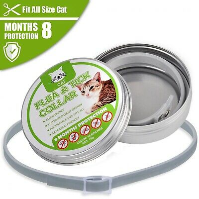 Flea Collar Tick 8 And Cat Cats Protection Month Months Anti Pet Dog Adjustable