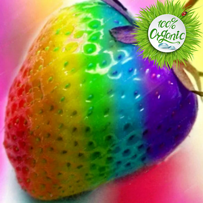 100Pcs. Rainbow Strawberry Multicolor Seeds Rare Bonsai Plants for Home Garden