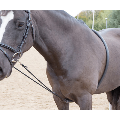 Shires Soft Lunging Aid - Black