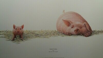 trotters by Warwick higgs pig piglet