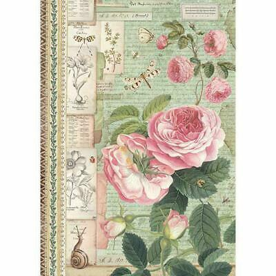 Rice Paper - Decoupage - Stamperia - 1 x A4 Size Sheet - English Pink Roses