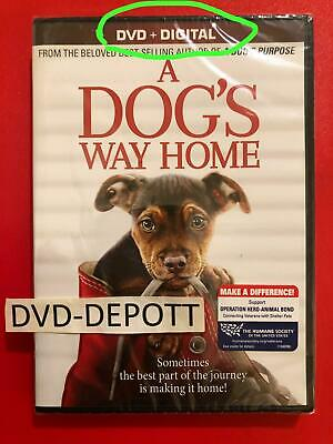 A Dog's Way Home 2019 DVD + Digital AUTHENTIC DVD READ New FAST Free Shipping