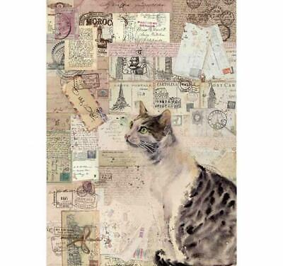 Rice Paper - Decoupage - Stamperia - 1 x A4 Size Sheet - Cat