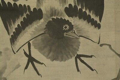 JAPANESE PAINTING SCROLL Magpie Japan AGED VINTAGE Plum Asian Antique Crow t82