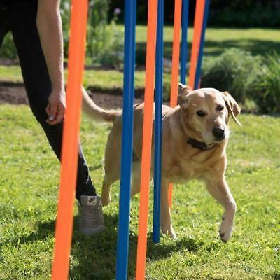 Dog Agility Weave Poles Training Sport Fun Competitions Garden Field Outdoor