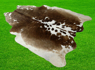 New Cow hide Rugs Cow  Skin Area 21.01 Sq-feet 2555