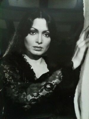 https://www.picclickimg.com/d/l400/pict/183850401273_/Indian-Vintage-Bollywood-Movie-Actress-Photograph-Parveen-Babi-95X12.jpg