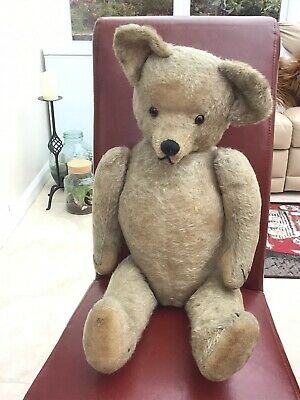 Very Large Early Unusual Humped Back Antique Old Vintage Teddy Bear
