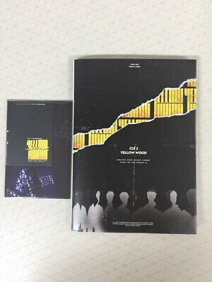 STRAY KIDS - CLE 2 : YELLOW WOOD Special Album Limited Ver
