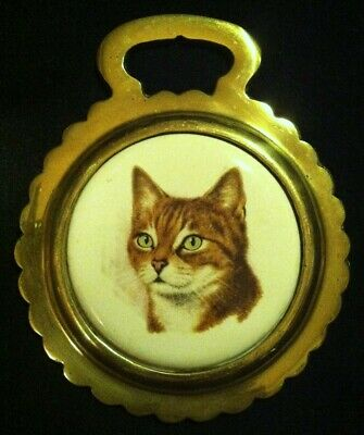 Vintage ORANGE STRIPED TABBY CAT Porcelain Horse Brass WOW YOUR WALLS! Divets!